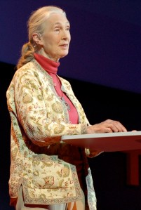 Jane_Goodall_at_TEDGlobal_2007-cropped