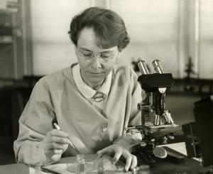 Barbara_McClintock_(1902-1992)_shown_in_her_laboratory_in_1947